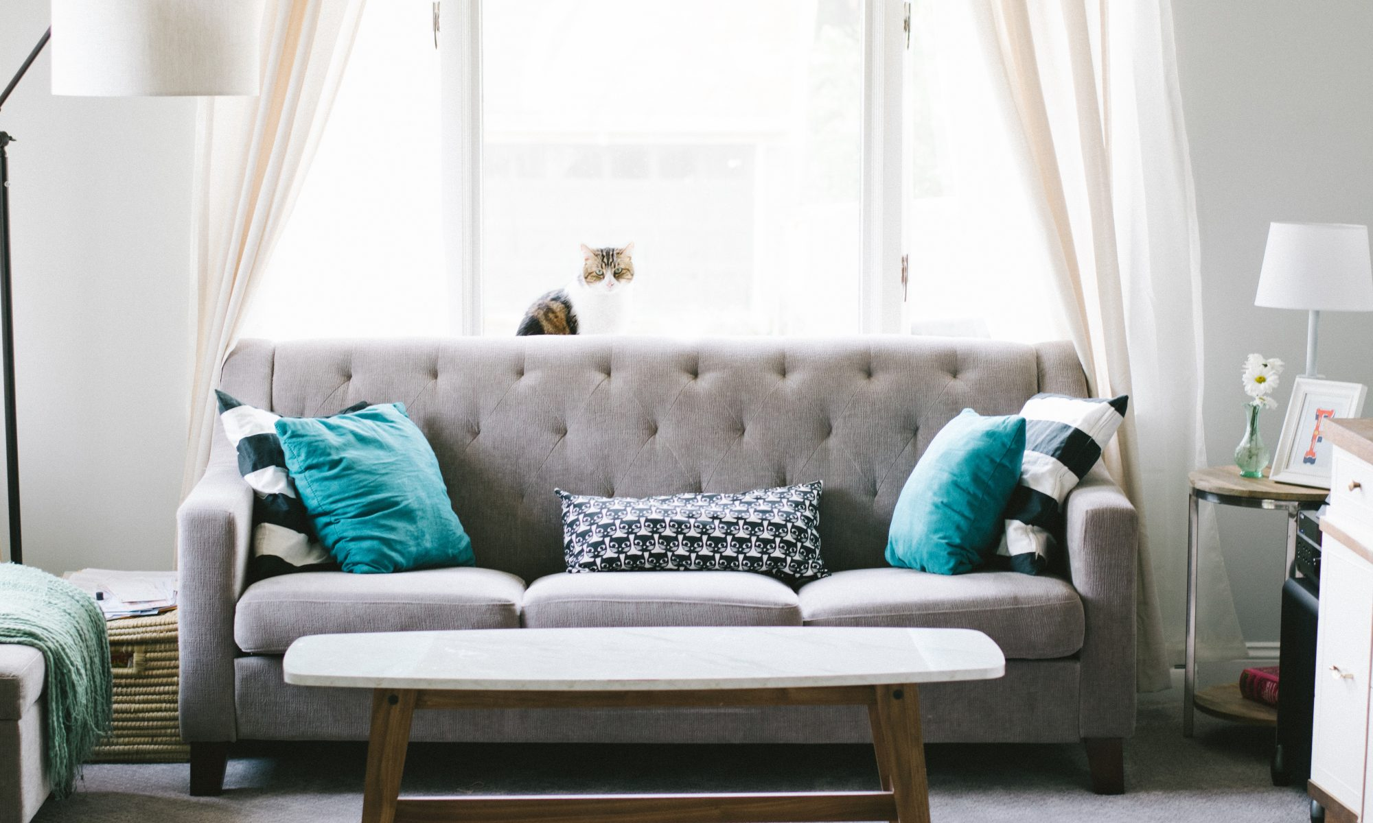 home gray couch